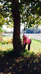 """Mema"" Sherry Van Campen (89) trimming trees at LZ-Grace"
